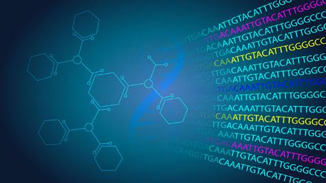 Bioinformatics Student Internships