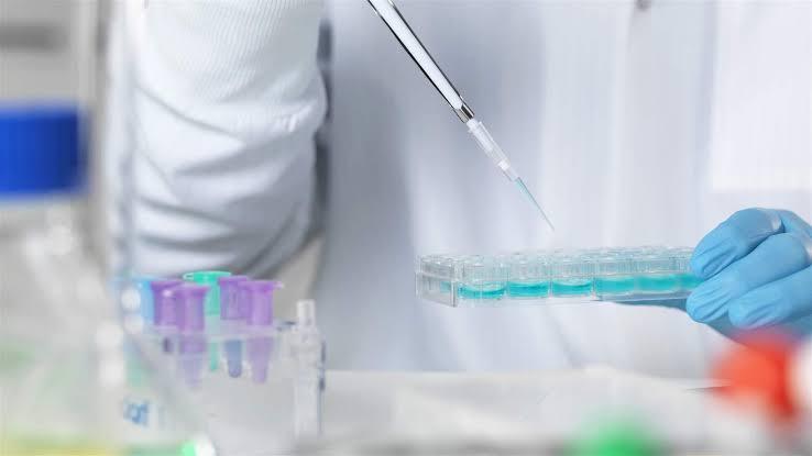 Global Rapid Medical Diagnostics Market 2020 Business Standards – Abbot  Laboratories, Trinity Biotech, Bio-Rad Laboratories, AccuBioTech Co. Ltd. –  BCFocus