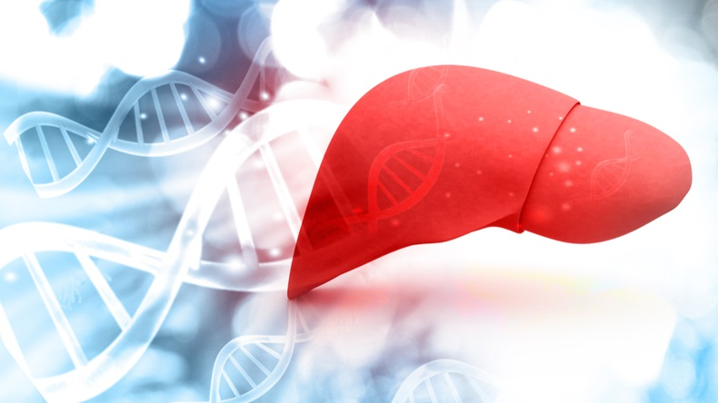 Can-Fite to treat advanced liver cancer patients with Namodenoson
